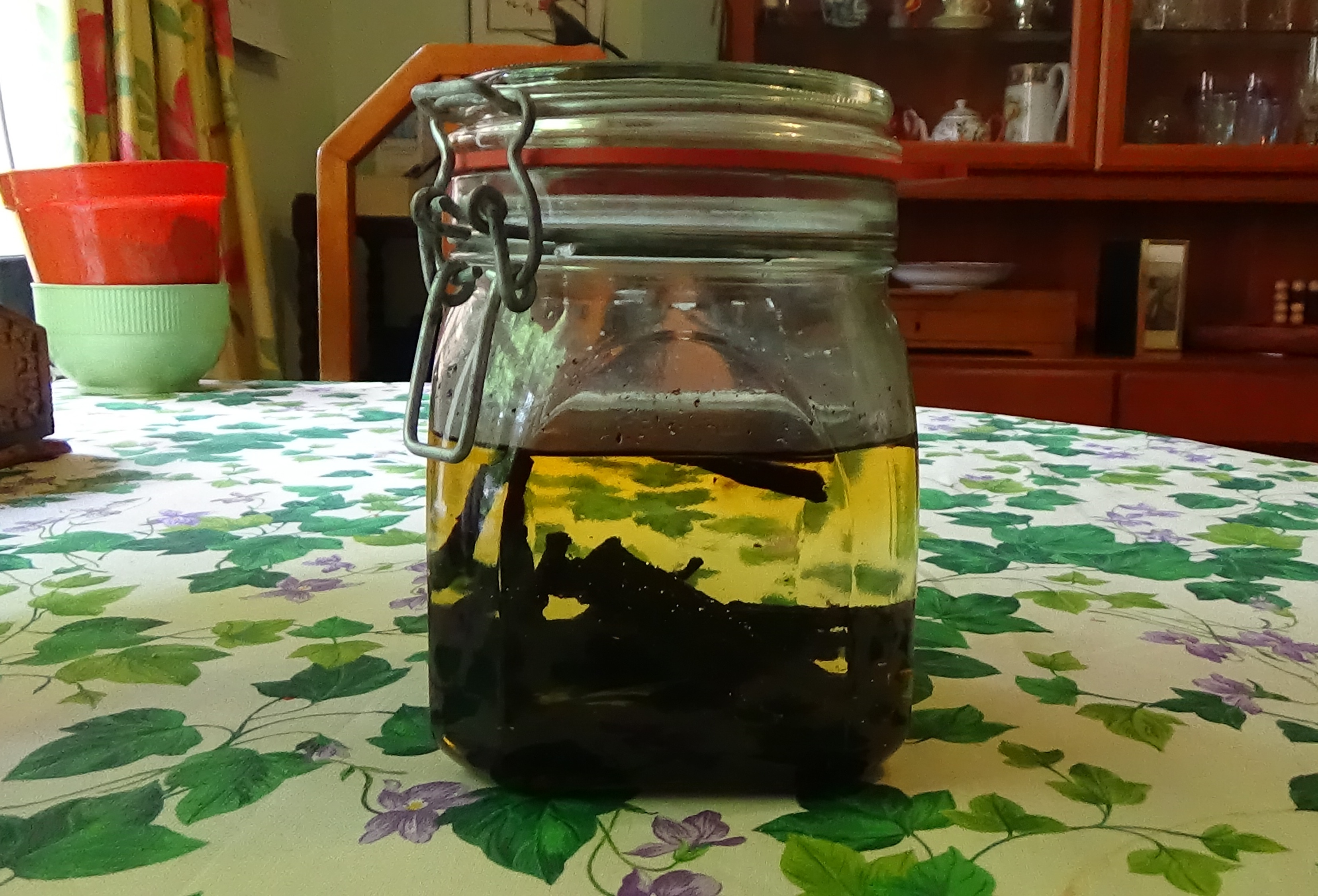 How to make alcohol-free vanilla extract